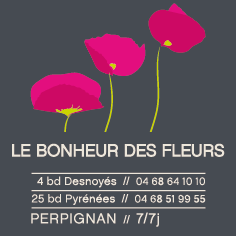 acara design, graphiste freelance, toulouse, castanet-tolosan